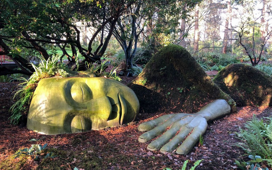 The Moss Lady, Beacon Hill Park